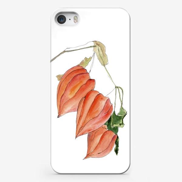 Чехол iPhone «Физалис. Краски осени.»