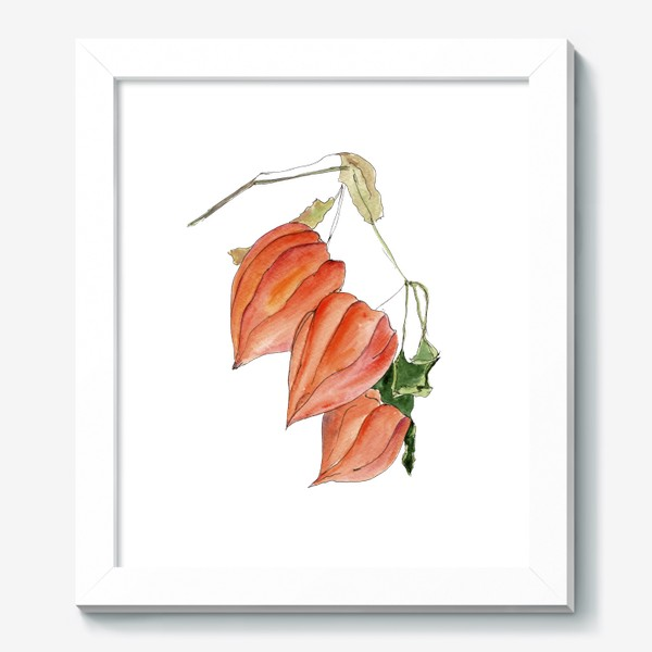 Картина «Физалис. Краски осени.»