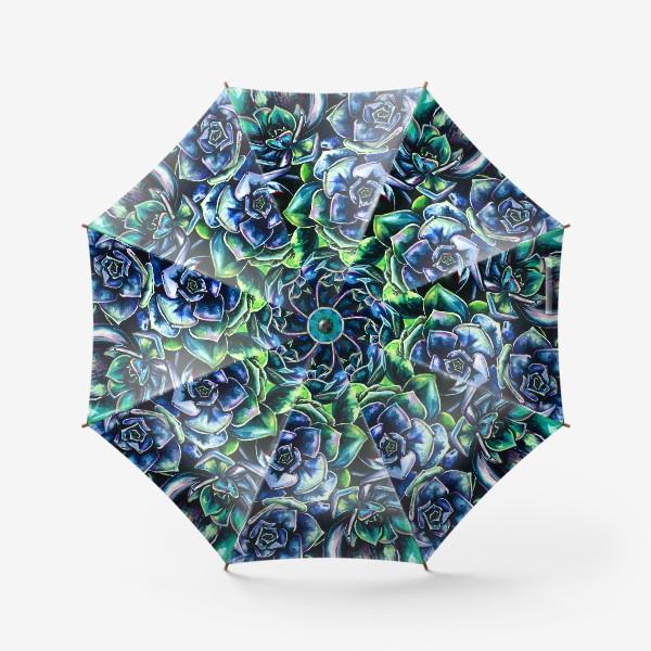 Зонт «Суккуленты, акварель»