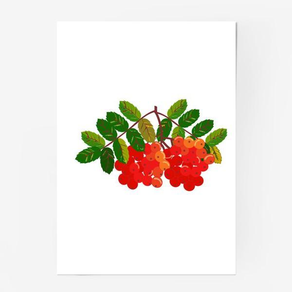 Постер «Рябиновая кисть»