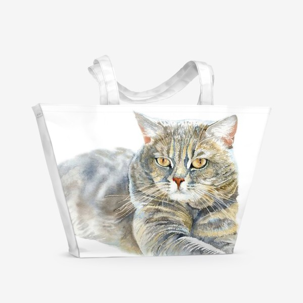 Пляжная сумка «Кот Арчи»
