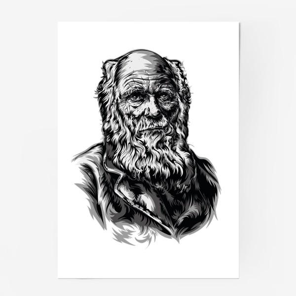 Постер «Дарвин»