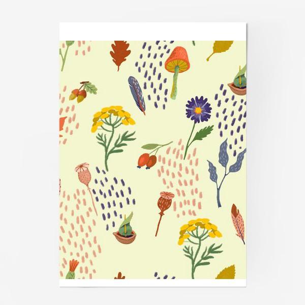 Постер «Цветы, осенние листья, перья, желуди, орехи»