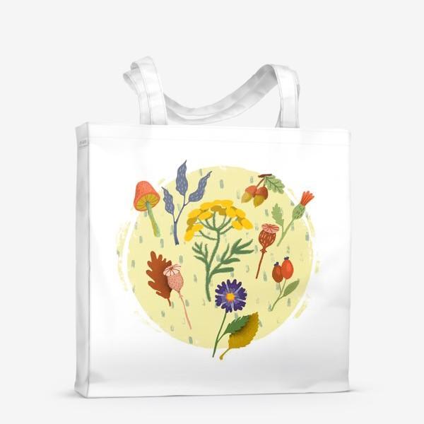 Сумка-шоппер «Маковые коробочки, пижма, шиповник, осенние цветы и листья»