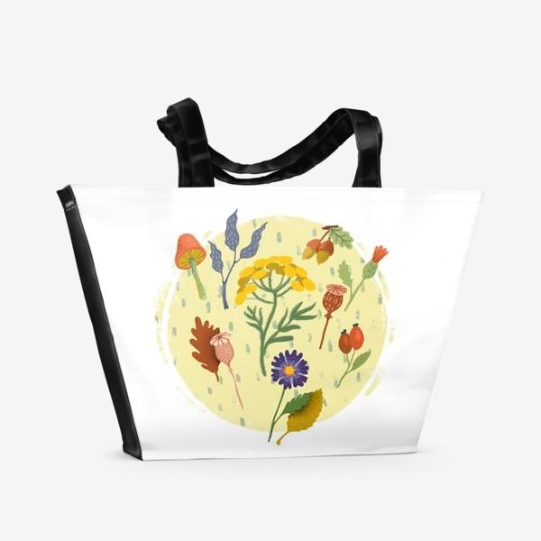 Пляжная сумка «Маковые коробочки, пижма, шиповник, осенние цветы и листья»