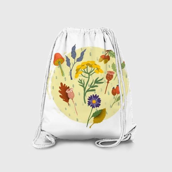 Рюкзак «Маковые коробочки, пижма, шиповник, осенние цветы и листья»