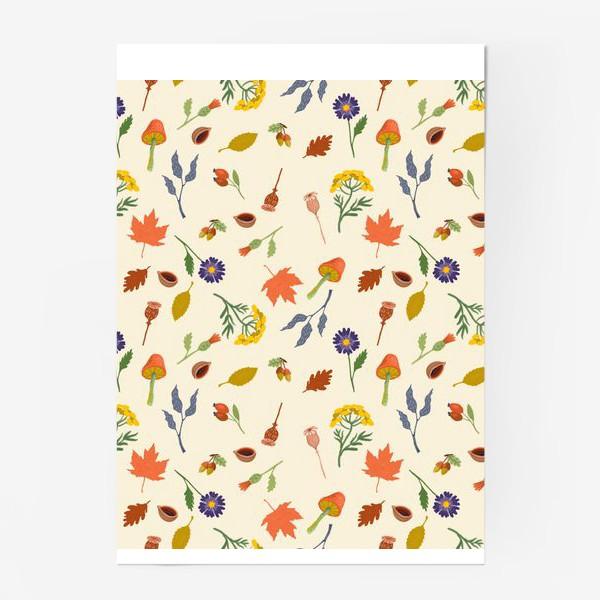 Постер «Осенние листья, цветы, грибы, желуди, орехи»