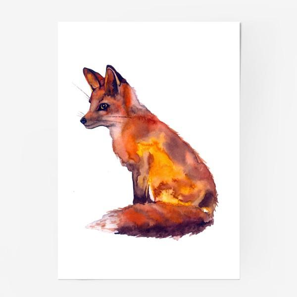 Постер «Лиса рыжая»
