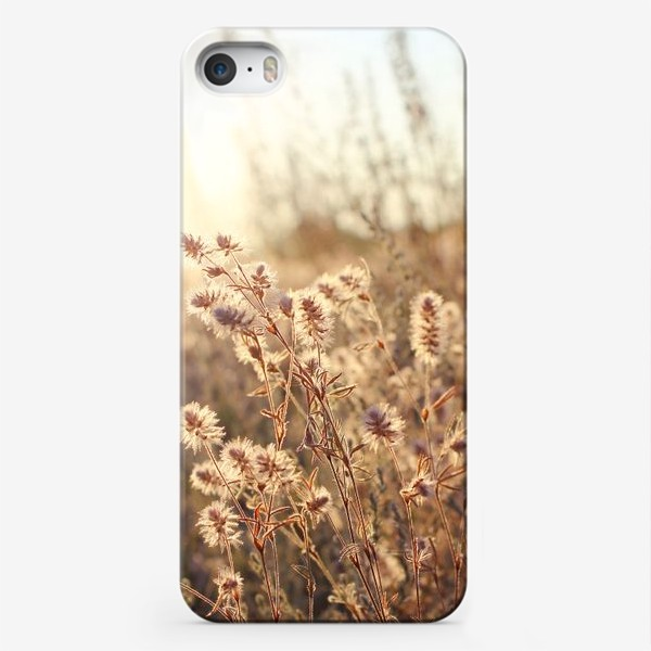 Чехол iPhone «В поле на закате»