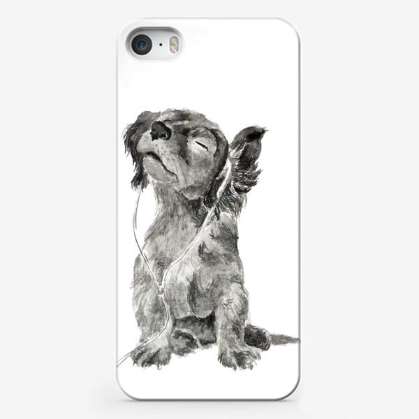Чехол iPhone «Собака щенок спаниель в наушниках»