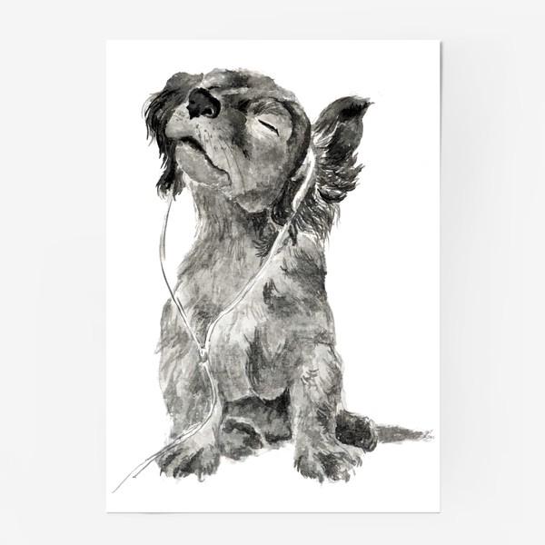 Постер «Собака щенок спаниель в наушниках»