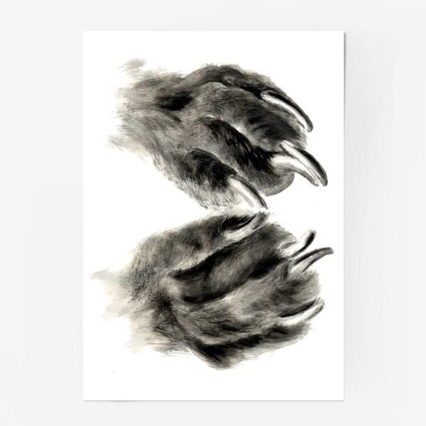 Постер «Лапы с когтями кошка или собака»