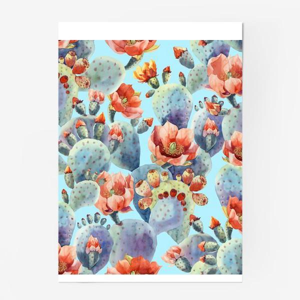 Постер «Цветущие кактусы на голубом фоне»