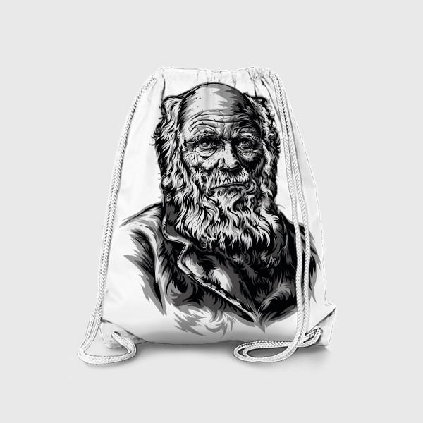 Рюкзак «Дарвин»