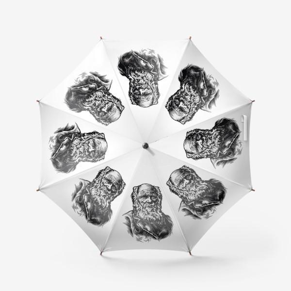 Зонт «Дарвин»
