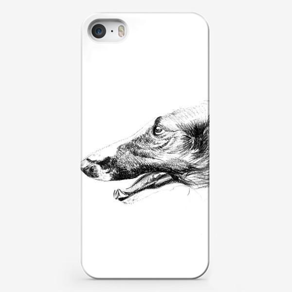 Чехол iPhone «Портрет собаки»