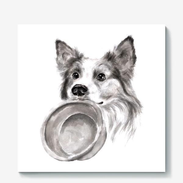 Холст «Портрет собака колли с миской»