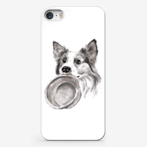 Чехол iPhone «Портрет собака колли с миской»