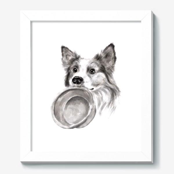 Картина «Портрет собака колли с миской»