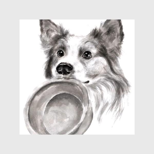 Шторы «Портрет собака колли с миской»