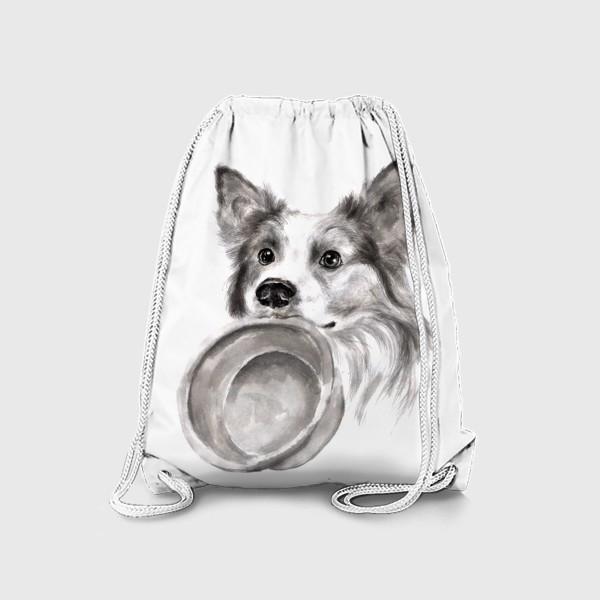 Рюкзак «Портрет собака колли с миской»