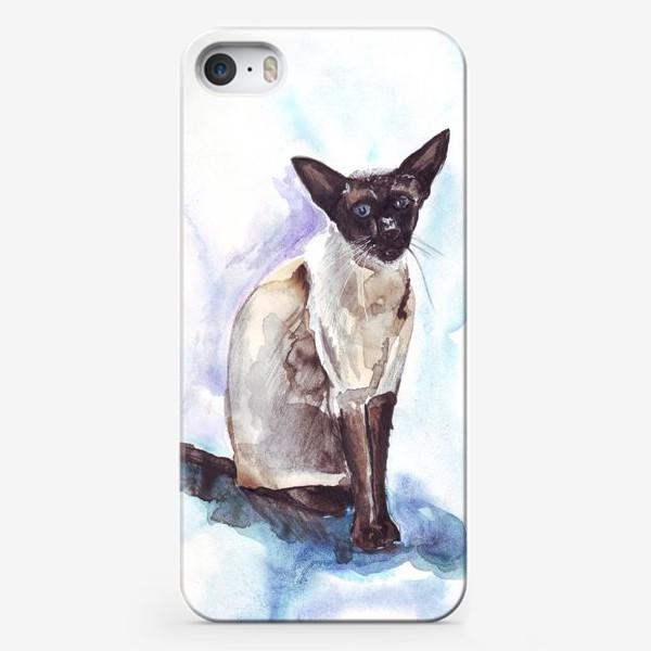 Чехол iPhone «Сиамский кот на голубом фоне»