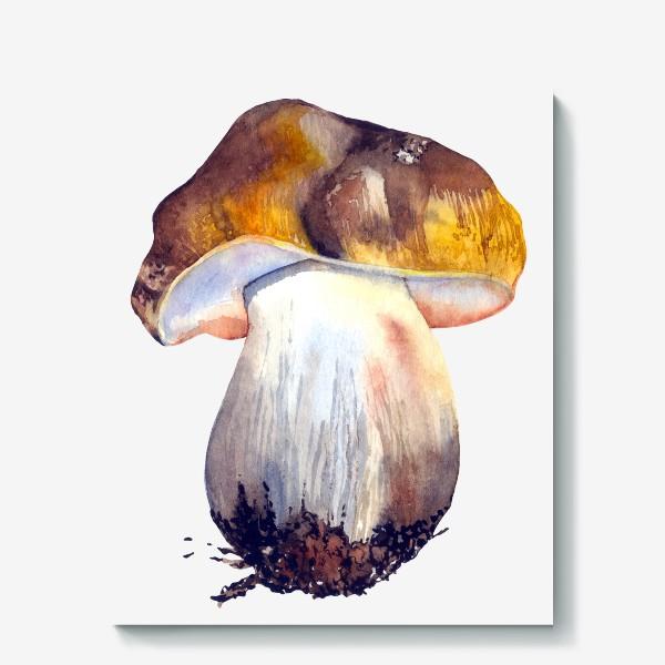 Холст «белый гриб»