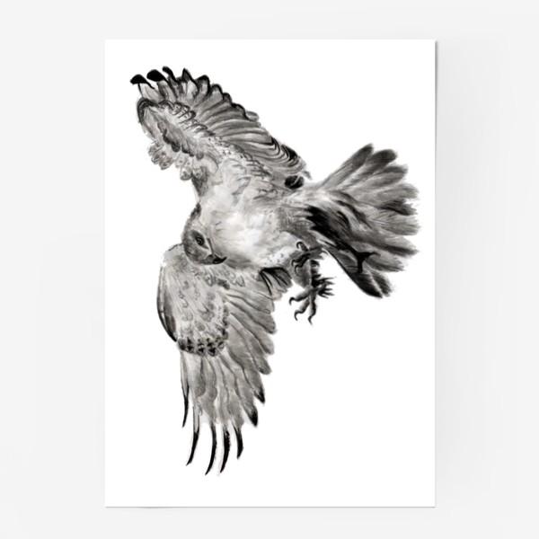 Постер «Орел расправил крылья и летит в прыжке»