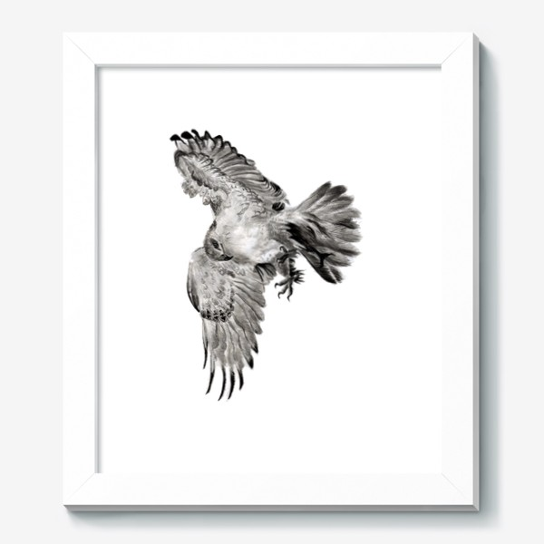 Картина «Орел расправил крылья и летит в прыжке»