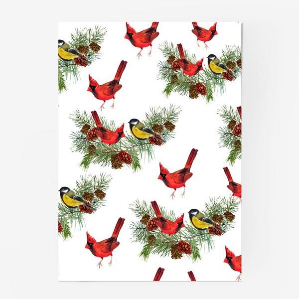 Постер «Птица синица, кардинал ель, шишки»