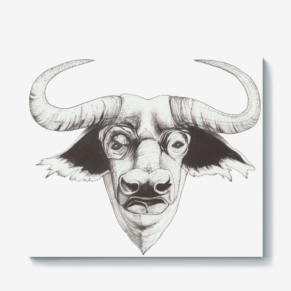 Холст «Бык смотрит»