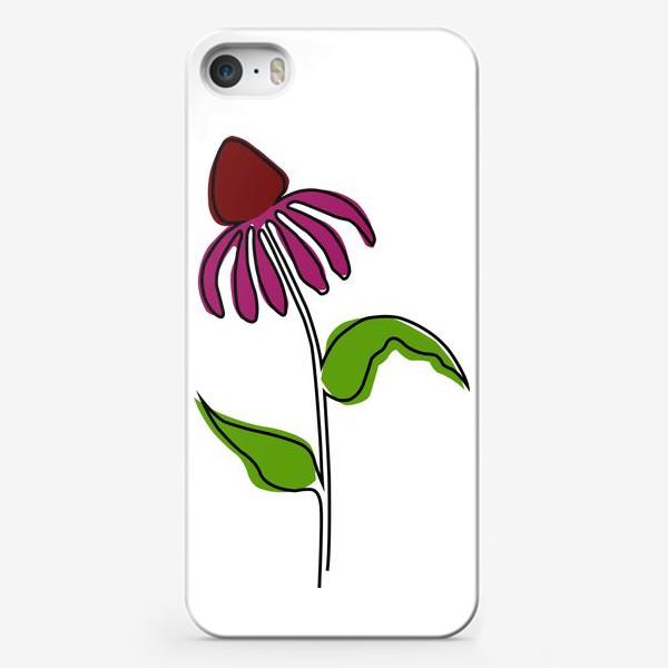 Чехол iPhone «Эхинацея»