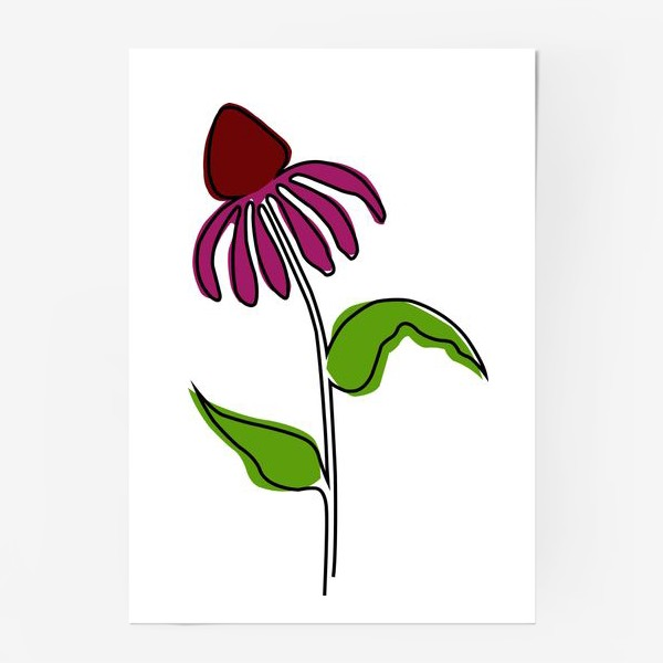 Постер «Эхинацея»