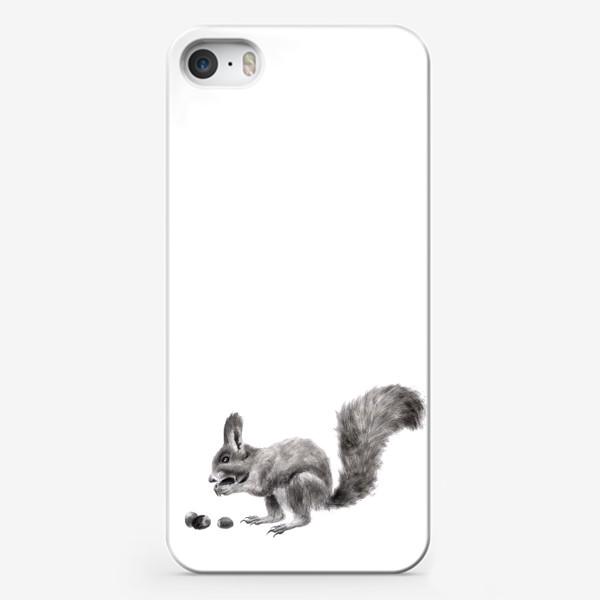 Чехол iPhone «белка ест орехи фундук»