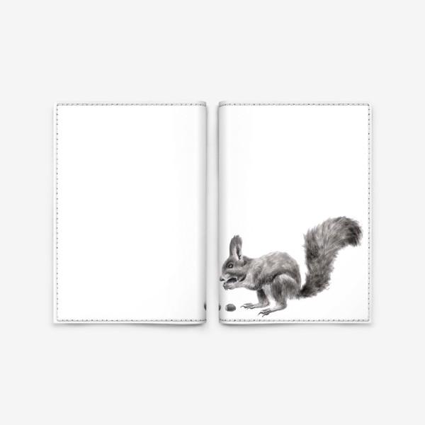 Обложка для паспорта «белка ест орехи фундук»