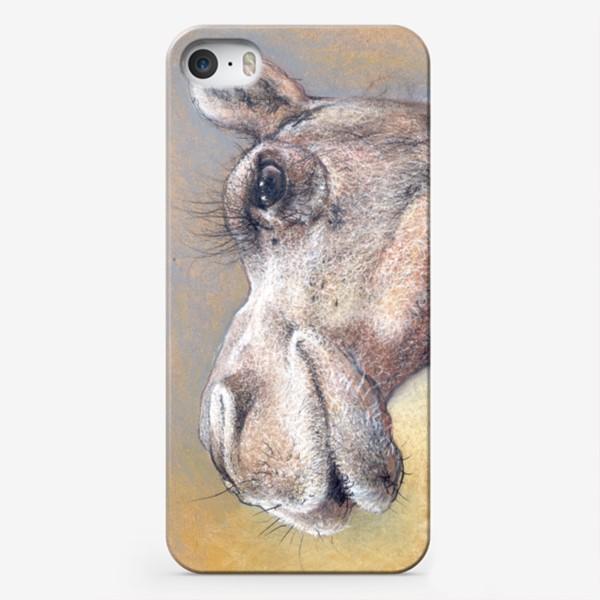 Чехол iPhone «Верблюд, подарок с юмором»