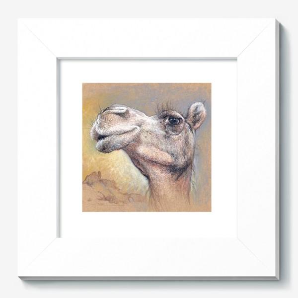 Картина «Верблюд, подарок с юмором»