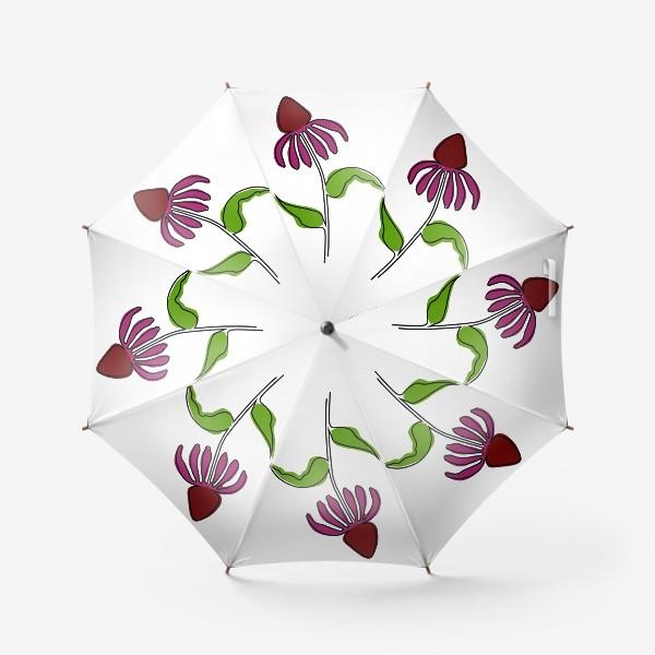 Зонт «Эхинацея»
