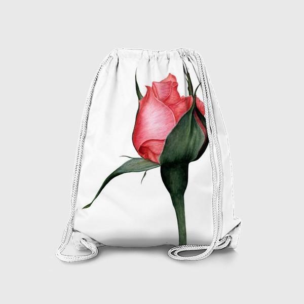 Рюкзак «Нежный бутон розы ботаническая иллюстрация акварель»