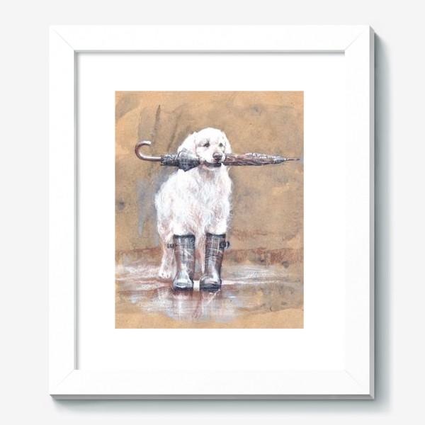Картина «Товарищ лабрадор, белый, собака, иллюстрация»