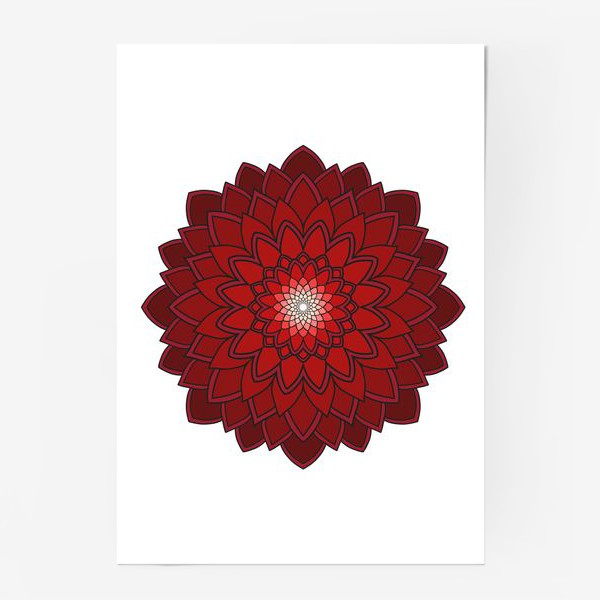 Постер «Мандала красная астра»