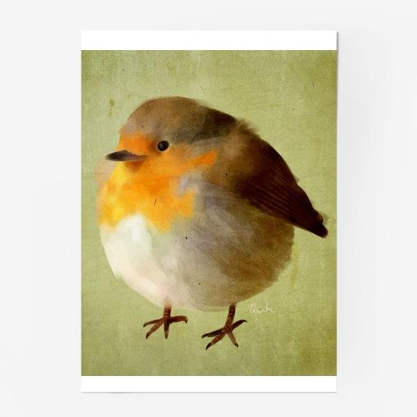 Постер «chubby bird»