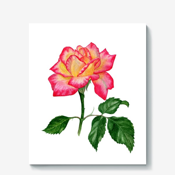 Холст «Розовая роза»