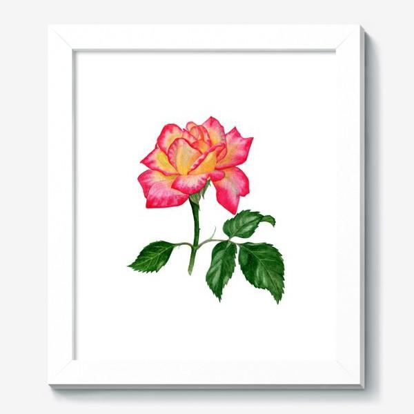 Картина «Розовая роза»