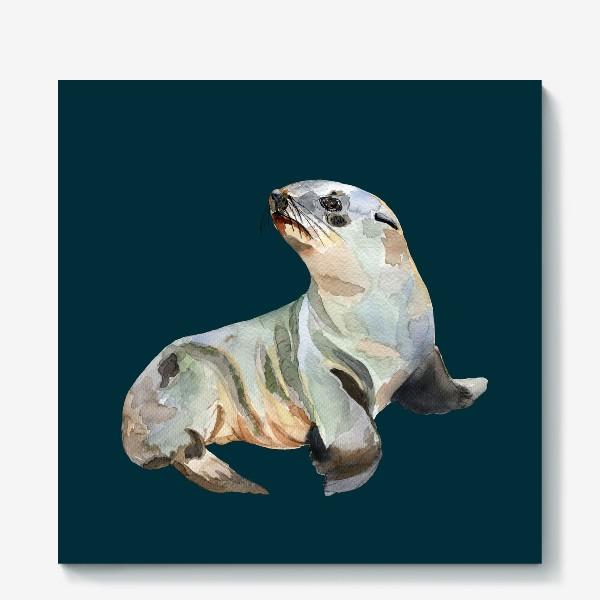 Холст «Морской котик»