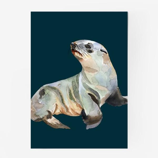 Постер «Морской котик»