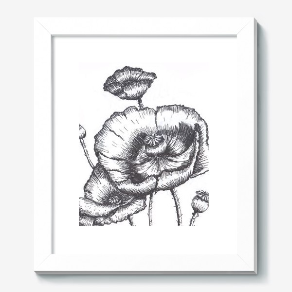 Картина «Маки (черно-белая графика)»