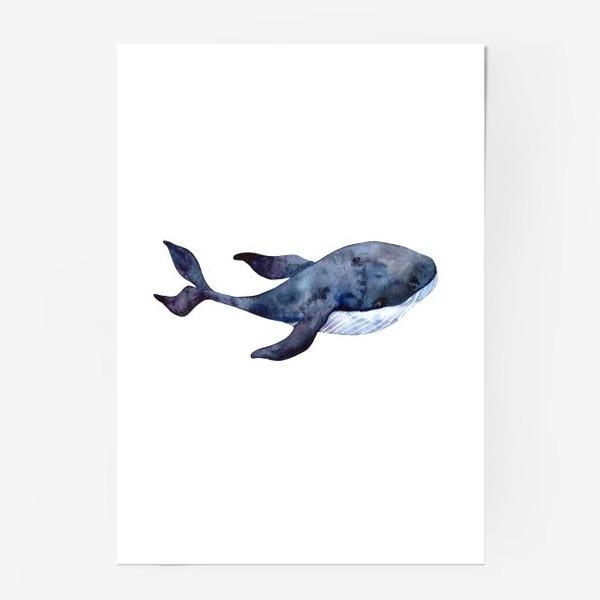 Постер «Кит»