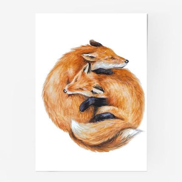 Постер «Лисы»