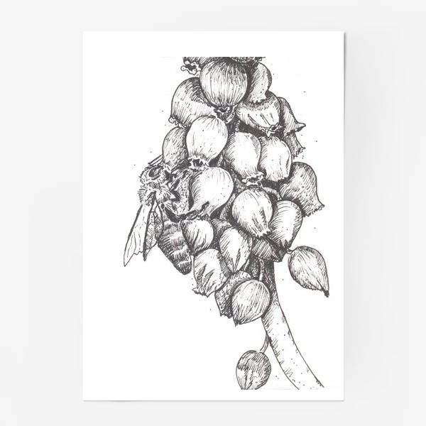 Постер «Мускари и пчела»